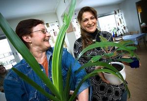 Lyckat. Det blev en lyckad Blombytardag på Tjärnkraft i lördags. Det tycker bland andra Anita Andersson och Ayten Tutay.