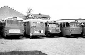 Vänster- och högertrafikbussar 1967.