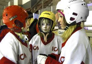 Maja Lundholm, Thea Olofsson Häppick och Viktoria Marttila snackar ihop sig innan de går ut på isen.