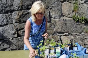 Christina Nordin sålde tomater och annat smått och gott.