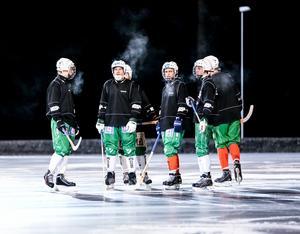 Östersunds bandysällskap efterlyser fler spelare på Facebook - och har fått en del napp.