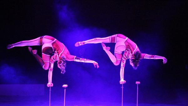 Cirkus Brazil Jack är Sveriges äldsta cirkus, etablerad redan 1899.