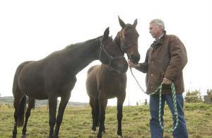 Ingemar Alin slutar som Hagmyrens ordförande och lägger nu mer av sin kraft på sina tio hästar. Foto: Fredrik Fransson/arkiv