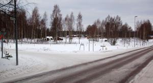 Miljöbild från området strax intill Villa Lowar. Foto: Börje Lindh/Arkiv