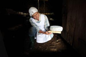 Birgitta Höglund är en av få i Sverige som mjölkar och tillverkar ost på en fäbodvall. Trots att sättet att hålla djur är på utdöende menar Birgitta att det är ett viktigt resurssnålt sätt att bedriva jordbruk och därför viktigt för framtiden.