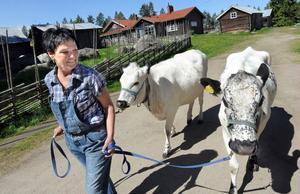 Eva Bernstål skaffade sina första getter för 25 år sedan, nu har hon utökad med två kor också.