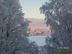Utsikt från pulkbacken på Frösön – en vacker inramning av rimfrostade träd. Foto: Camilla Gustafsson