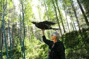 En flätad örn höjer sig mot skyn. Konstnären heter Marga Boustedt.