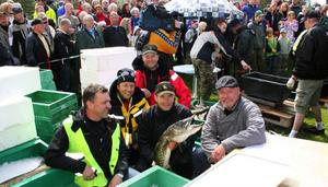 Arne Andersson, Johnny Jensen, Kent Olofsson och Jon Jonsson tillsammans med gädduppköparen Feskarns Ebbe Olsson, Brunflo, efter avslutad Storslok.Foto: Jan-Owe Johansson