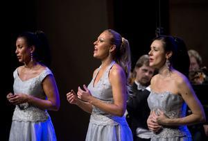 Opera Divine är Jaqueline Miura, Gabriella Lamnert-Olsson och Caroline Gentele. De vill sprida opera och klassisk musik genom att sjunga vackert och skoja med kringverket.