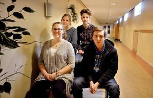 Frida Mattsson, Annie Grelsson Lindeberg, Molly Preston Eriksson och Liam Kjerp uttrycker oro för att politikerna på onsdag ska ta ett beslut som får negativa följder för instrumentundervisningen.