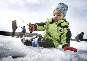 2-årige Idris Maiga deltog aktivt i Boggsjöpimpeln för första gången.