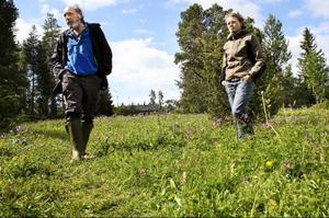 Bengt Petterson på länsstyrelsen och praktikanten Sara Lindqvist besöker ett ovanligt område med brunkulla och ängsblommor som ligger i Torvalla.