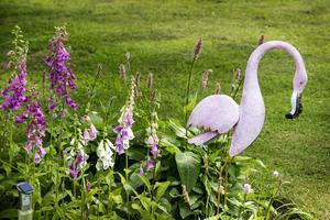 Trädgårdens framsida bjuder bland annat på färgstämda rabatter.