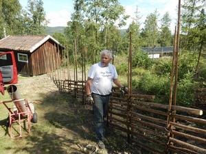 Tommy Nordlund bygger gärdsgård