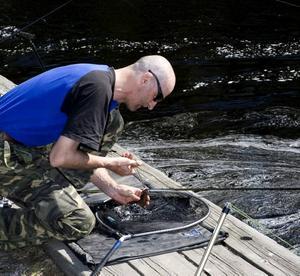SUPERKOLL. Janne Westerberg väger och mäter vimman på en speciell matta innan han släpper tillbaka den.