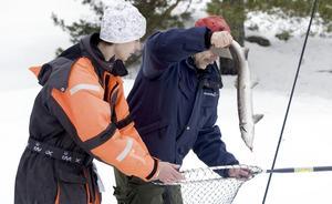 Johan Skyman hjälper pappa Ulf Skyman med öringen han dragit upp.