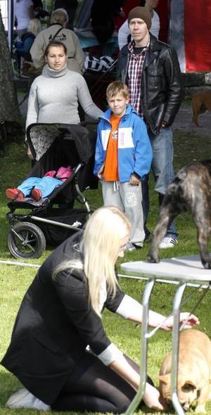PUBLIK. Sofia Vejdeland, Bianca Rossini, Elias Johansson och Robert Rossini tittar på utställningen. Familjen från Valbo funderar på att skaffa egen hund - vilken ras återstår att se.