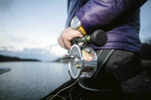 Flugfiske efter gädda kräver kraftigare utrustning i nivå med laxfisket.