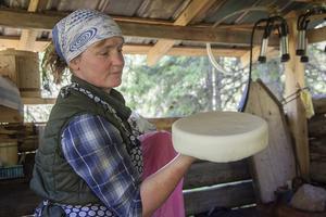 Av 50 liter mjölk blir det en ost på 2-3 kilo när ostmassan har pressats samman. Restprodukten blir vassle. Det kokar man messmör av.