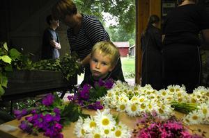 Överdåd av blomster. Martin Perers beundrar den prunkande prakten på bordet.