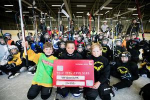 VIK Hockey fick mest pengar i länet