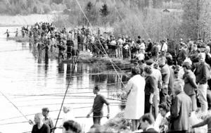 Det var ett myller av metare och publik kring Lötån under tävlingen. Man tävlade på en sträcka på omkring 1 000 meter, med metare utplacerade på bägge sidor av Lötån.