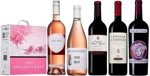 Både viner till Systembolagets ordinarie sortiment i större volymer och mer exklusiva tillfälliga nyheter lanseras i juni. Här är sex av de bästa rosa och röda köpen.