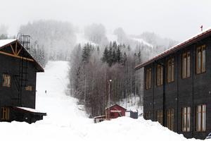 Tre inbrott ägde rum på kort tid i skogarna runt Sandviken natten till fredag.