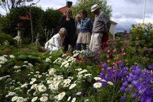 Trevligt. Aina berättar för gäster om blommorna. Foto:Karolina Lundgren