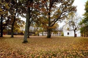 Asylboendet i den gamla skogshögskolan i Garpenberg stängs förmodligen i slutet av mars. Men redan om ett par veckor stängs förskolan.