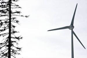 Både vindkraftbolaget Enercon och den chef som var åtalad för arbetsmiljöbrott frias.