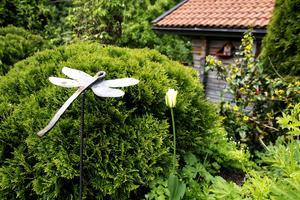 I Britt och Henning Åströms trädgård vinns gott om detaljer att vila blicken på.