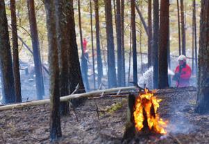 I närheten av stugområdet på Björnrike uppstod den ena av två skogsbränder som startade på onsdagseftermiddagen i Härjedalen.