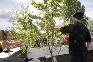 Grönt och grant ordnade Tomas Åkerlund och Christoffer Backlund,