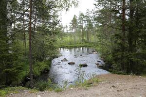 Spåren efter flottningsepoken är utsuddade och Håjensån är återlämnad till naturen.