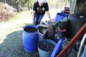 Här pågår produktion av biokol i olika stadier av framställning. Den ena tunnan innehåller krossad träkol, den  vita baljan en sörja av träkol, vatten och näring, och i den andra tunnan ligger en blandning av torr, näringsberikad kol och brunnen hästgödsel. Den sista blandningen är färdig att sprida ut och hacka ner i rabatter och trädgårdsland.