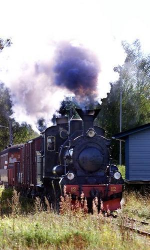 Vem tar ansvar för att bevara de historiska järnvägsminnesmärkena som Jädraås-Tallås järnväg? Inte de tre statliga myndigheterna i alla fall.