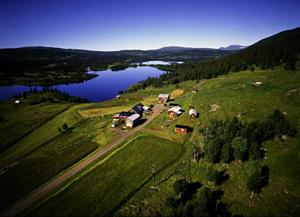 Vid vägs ände mitt i storskogen mellan Strömsund och Gäddede ligger fjällägenheten Blomhöjden, en av de 15 som återstår i länet