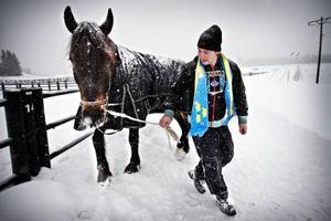 Benjamin Bergström har hållit på med hästar sedan barnsben och bland annat kört 900 ponnylopp. Hans mål är att bli proffstränare.