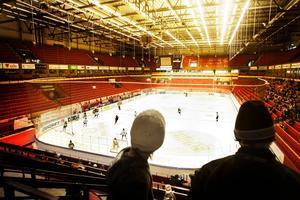 Snart dags för ungdomsseriernas slutspel att dra i gång. Därför uppmanar nu Gästriklands hockeyförbund ledare och föräldrar att tänka på barnen som spelar i första hand.