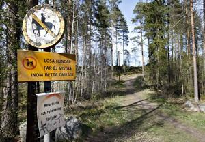 På första maj sökte polisen med två hundpatruller i området med elljusspåret i Forsbacka och på lördagen sökte man med helikopter i samma område.