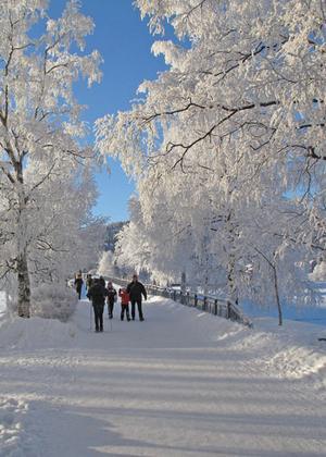 Gångbron till Frösön från Badhusparken en riktigt kallvinterdag. Foto: C-G Jämteby
