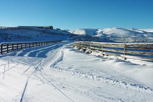 Landskapet runt Snow farm i Nya Zeeland.