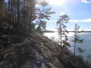 Det nya naturreservatet ligger i Lingarö och är 40 hektar stort.