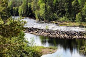Vinströmmarna norr om Voxnabruk får representera Wild Ovanåker med olika former av naturupplevelser.