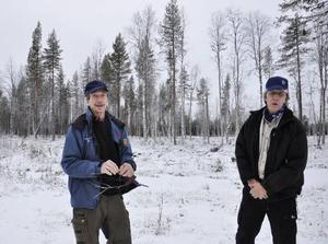 Peter Karlström och Roger Bergström från SCA i skogen vid Långmarksflon där man har valt att spara lövskog och ta bort granskog. Det har gjorts för den biologiska mångfaldens skull.