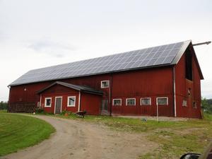 Taket på ladugården ligger i söderläge, panelerna fick han hjälp med att sätta upp tack vare en byggfirma i Bräcke.