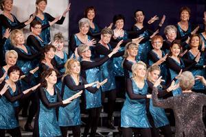 Västerås Harmony Show Chorus under ledning av Maria Wessman gjorde bra ifrån sig under de nordiska mästerskapen i Barbershop.