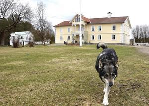 Gården med anor från 1700-talet kan nu stoltsera med att stora artister bott här. Hunden Humla är mer än måttligt sällskapssjuk enligt husse och matte.